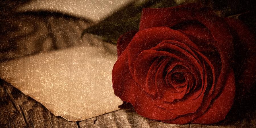 Красная роза и старинная бумага на деревянном столе