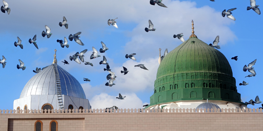Зелёный купол мечети Пророка Мухаммада, Медина, Саудовская Аравия