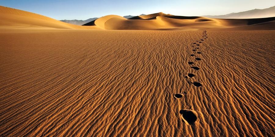 Следы в песке