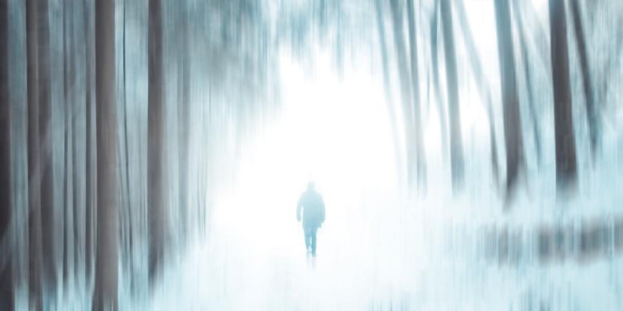 Человек идёт на свет в лесу