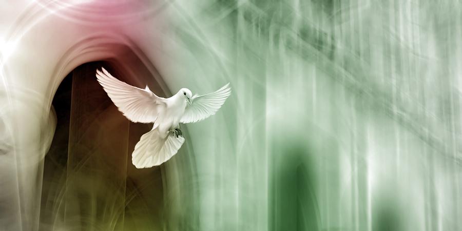 Пророчество оМухаммаде впотерянном Инджиле (Евангелии) пророка Исы