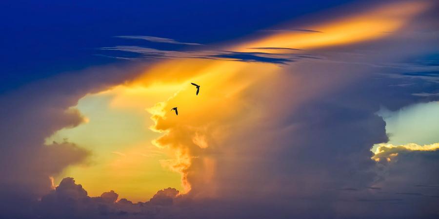 Разговор Всевышнего Аллаха со Своим Посланником во время его вознесения на небеса