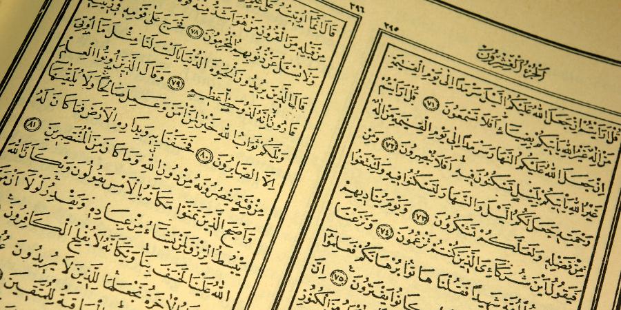 Хадисы отом, что Али иИмамы после него знают обо всём, что было ниспослано Посланнику Аллаха