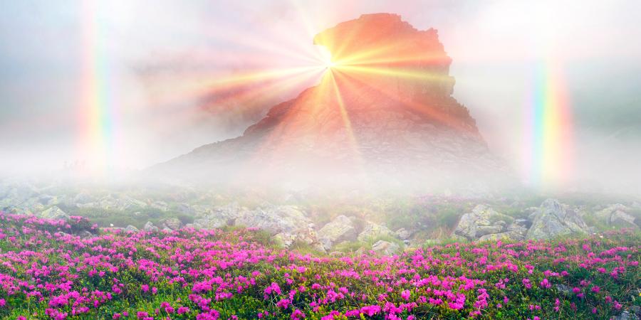 Был ли пророк Адам изгнан из Рая ближнего мира или будущего?