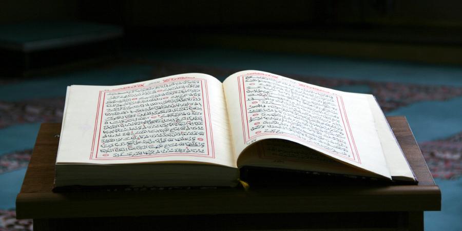 Хадисы отом, что Имамы — это «те, которые знают», их враги — это «те, которые не знают», аих шииты — «обладающие разумом»