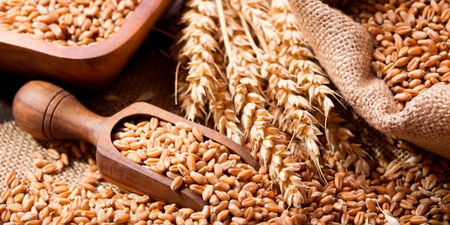 Пшеница на столе